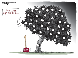 Florida Opioid Tree by Bill Day