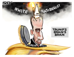 Miller Lighted by Steve Sack