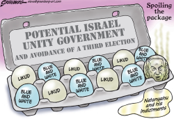 Israel Coalition Eggs by Steve Greenberg
