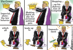 Impeachment by Steve Greenberg