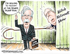 Bolton offers to testify by Dave Granlund