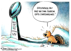 Super Bowl 2020 Feb 2 by Dave Granlund