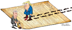 Trump McConnell and the Constitution by Daryl Cagle