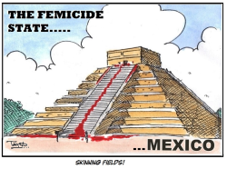 Mexico Femicide state by Tayo Fatunla