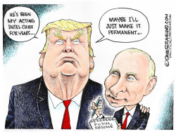 Trump intel chief by Dave Granlund