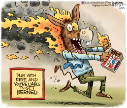 Democrats Berned by Rick McKee