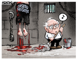 Castro Cleanup by Steve Sack