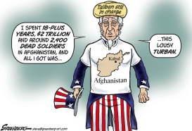 All I got in Afghanistan was... by Steve Greenberg