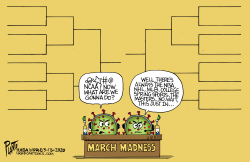 March Madness... by Bruce Plante