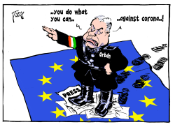 Orban emergency law by Tom Janssen