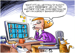 Zoom work from home by Dave Whamond