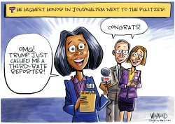 Journalism badge of honor by Dave Whamond