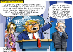 Trump Coronavirus Cures by Dave Whamond