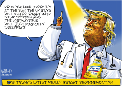 Dr. Trump's latest bright idea by Dave Whamond