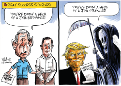 Trump's Great Success Story by Dave Whamond