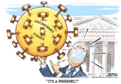 McConnell Fights Unconfirmed Judges Pandemic by R.J. Matson