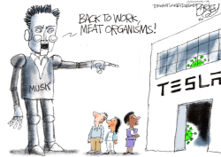 Musk is Weird by Pat Bagley