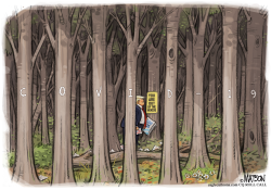 Trump Is Out of the Covid-19 Woods by R.J. Matson