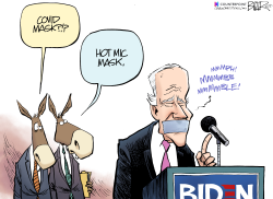 Biden Mask by Nate Beeler