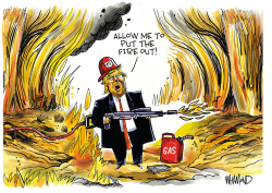 The Firestarter by Dave Whamond