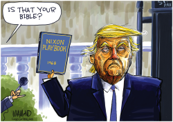 Trump's Bible by Dave Whamond
