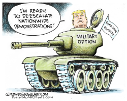 Military option for demonstrations by Dave Granlund