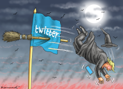 Trumps Twitter Fall by Marian Kamensky
