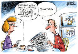 2020 has been a long decade by Dave Whamond