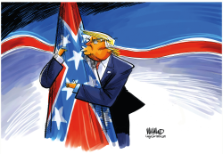 Confederate President by Dave Whamond