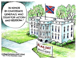 Trump and Flag Day by Dave Granlund