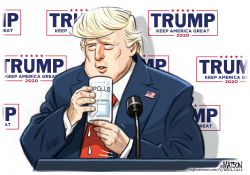 Trump Struggles to Lift Poll Numbers by R.J. Matson