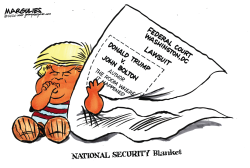 NATIONAL SECURITY Blanket by Jimmy Margulies