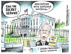 Bolton Tell-All Book by Dave Granlund