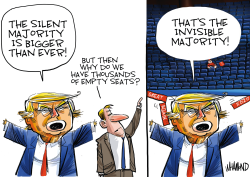 The not so Mega MAGA rally by Dave Whamond