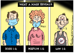 What A Mask Reveals by Bob Englehart