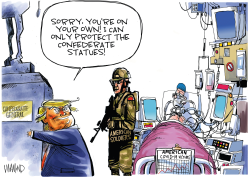 Trump protecting monuments but not Americans by Dave Whamond