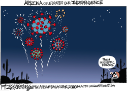 2020 Fireworks over Arizona by David Fitzsimmons