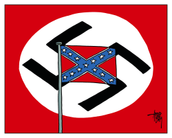 Confederate Flag by Arend van Dam
