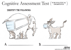 Cognitive Assessment Test by R.J. Matson