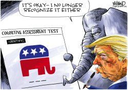 GOP Identity Crisis by Dave Whamond