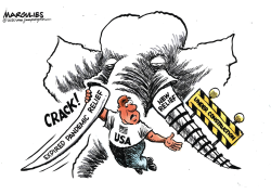 Expired Pandemic Relief by Jimmy Margulies
