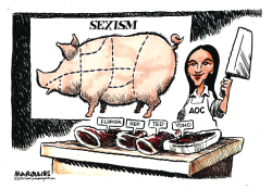 AOC and Sexist Congressman Yoho by Jimmy Margulies