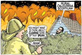 REPOST CA Fire Safety Brush Clearing by Monte Wolverton