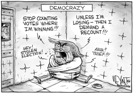 Trump's Democracy  by Christopher Weyant