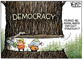 Chopping Democracy by Christopher Weyant
