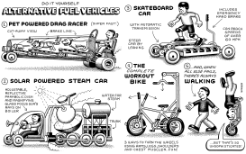Do It Yourself Alternative Fuel Vehicles by Andy Singer