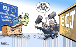 Poland and Hungary at ECJ by Paresh Nath