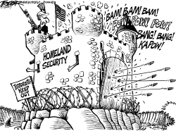 Homeland Insecurity by John Trever